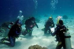 Exciting updates from Buddy Dive in Bonaire